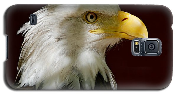 Bald Eagle - Majestic Portrait Galaxy S5 Case