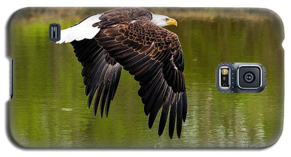 Bald Eagle Over A Pond Galaxy S5 Case