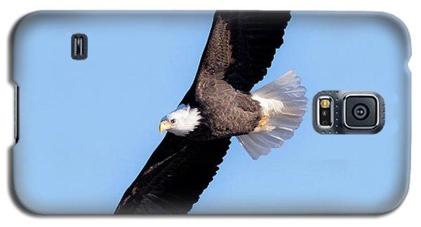 Bald Eagle Overhead  Galaxy S5 Case