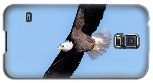 Bald Eagle Overhead  Galaxy S5 Case