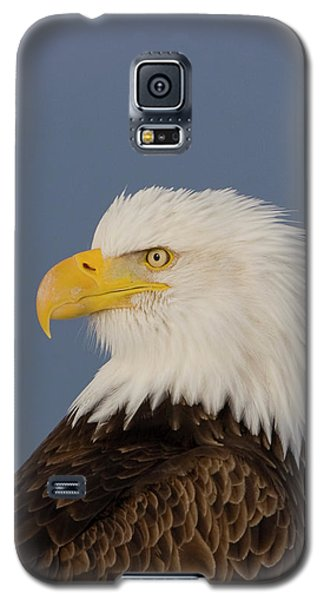 Bald Eagle Portrait Galaxy S5 Case
