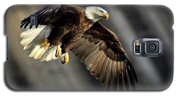 Bald Eagle Prepares To Dive Galaxy S5 Case