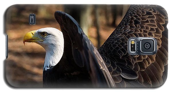Bald Eagle Preparing For Flight Galaxy S5 Case