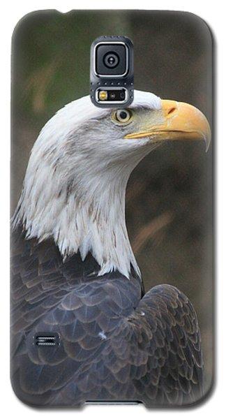 Bald Eagle Profile Galaxy S5 Case