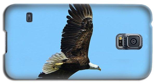 Galaxy S5 Case featuring the photograph Bald Eagle Series IIi by Deborah Benoit