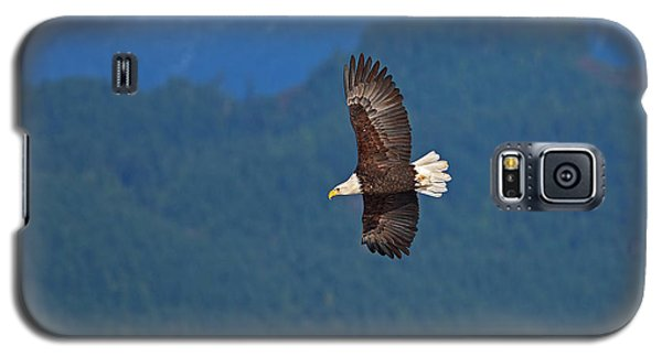 Galaxy S5 Case featuring the photograph Bald Eagle Soaring  by Sharon Talson
