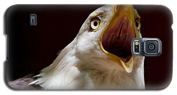 Bald Eagle - The Great Call Galaxy S5 Case