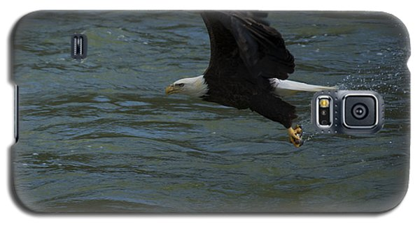 Bald Eagle With Fish In Claws Flying Over The French Broad River, Tennessee Galaxy S5 Case