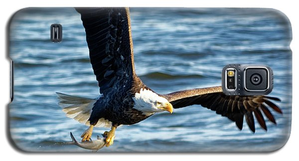Bald Eagle With Fish Galaxy S5 Case