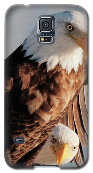 Bald Eagles Galaxy S5 Case