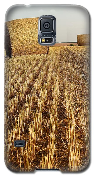 Bales Of Hay Galaxy S5 Case by Gary Bridger