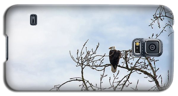 Galaxy S5 Case featuring the photograph Balk Eagle by Rebecca Cozart