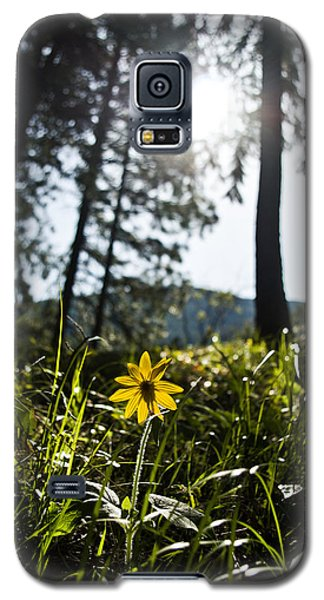 Balsamroot Galaxy S5 Case