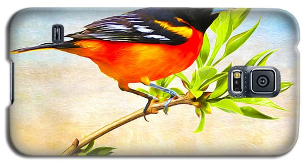 Oriole Galaxy S5 Case - Baltimore Oriole Bird by Laura D Young