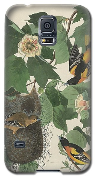 Baltimore Oriole Galaxy S5 Case by Rob Dreyer