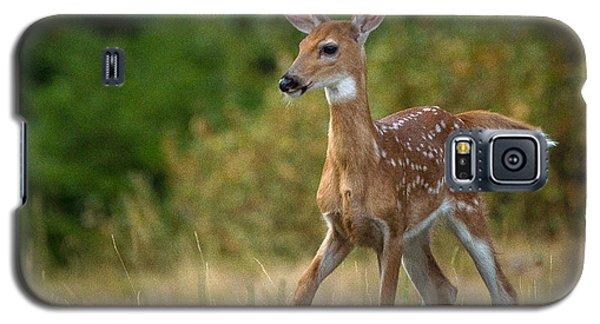 Bambi // Whitefish, Montana  Galaxy S5 Case
