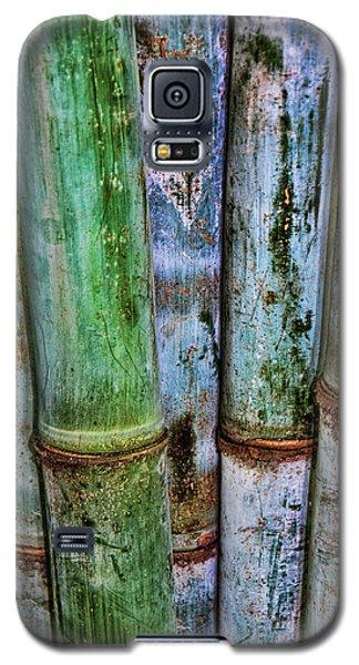 Bamboo 2 Galaxy S5 Case