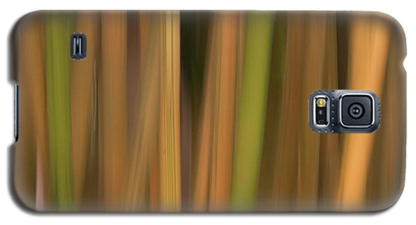 Galaxy S5 Case featuring the photograph Bamboo Abstract by Carolyn Dalessandro