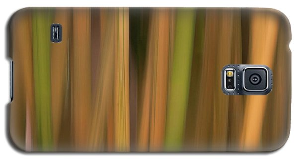 Bamboo Abstract Galaxy S5 Case by Carolyn Dalessandro