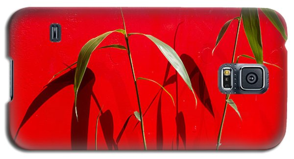 Bamboo Against Red Wall Galaxy S5 Case
