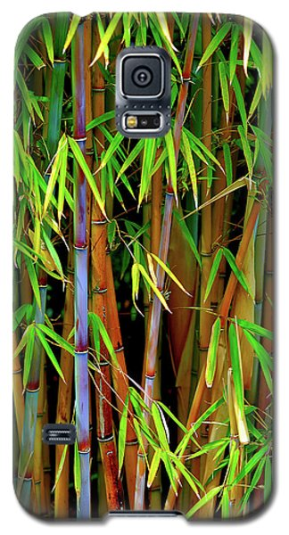 Bamboo Galaxy S5 Case