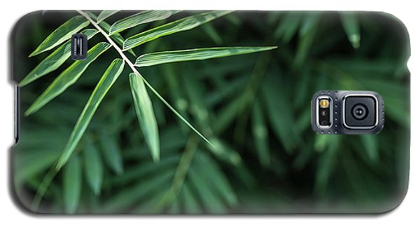 Galaxy S5 Case featuring the photograph Bamboo Leaves Background by Jingjits Photography