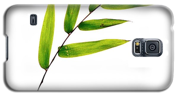 Bamboo Leaves Galaxy S5 Case