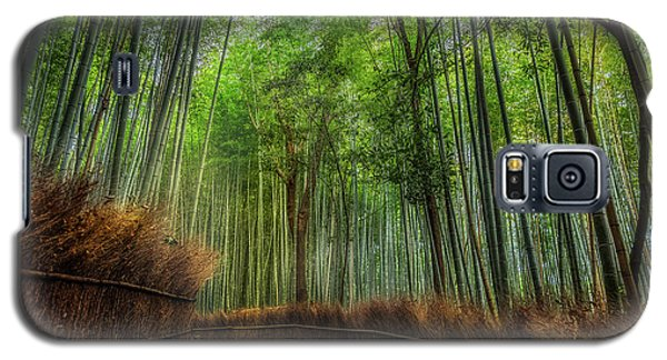 Galaxy S5 Case featuring the photograph Bamboo Path by Rikk Flohr