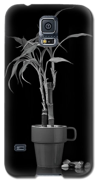 Galaxy S5 Case featuring the photograph Bamboo Plant by Tom Mc Nemar