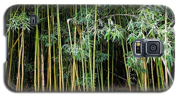 Bamboo Wind Chimes  Waimoku Falls Trail  Hana  Maui Hawaii Galaxy S5 Case