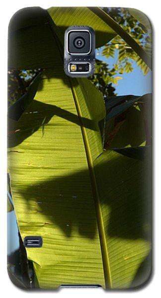 Banana Leaf Galaxy S5 Case