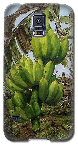 Banana Tree Galaxy S5 Case by Chonkhet Phanwichien