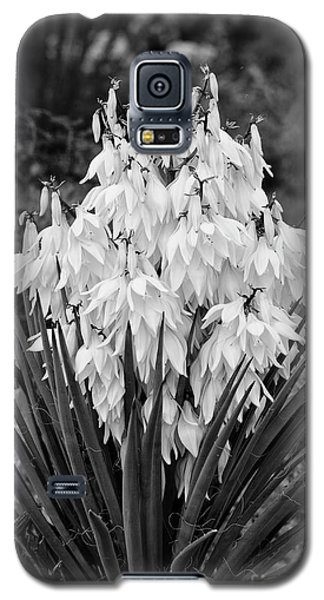 Banana Yucca In Bloom Galaxy S5 Case