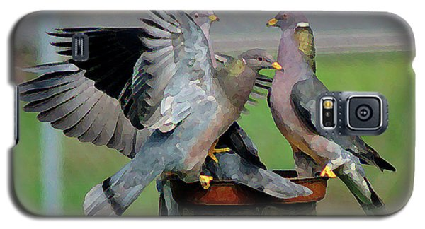 Band-tailed Pigeons #1 Galaxy S5 Case