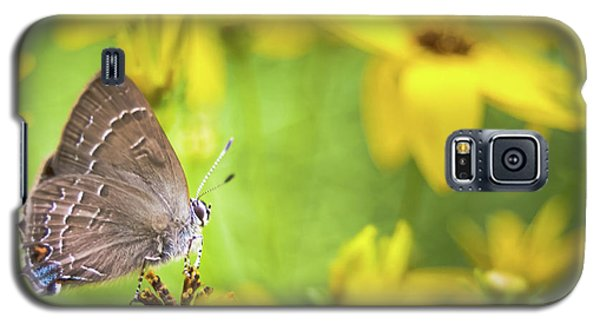 Banded Hairstreak On Coreopsis Galaxy S5 Case