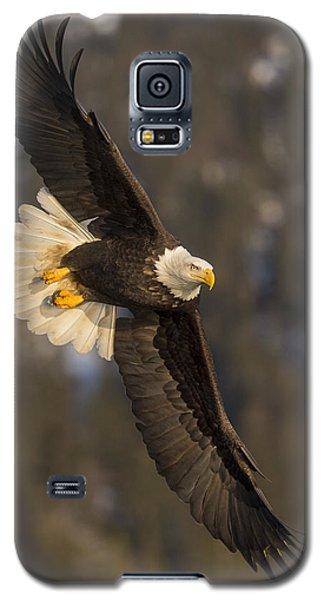 Banking Bald Eagle Galaxy S5 Case