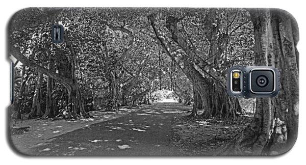 Banyan Street 2 Galaxy S5 Case