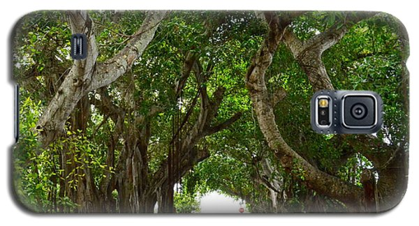 Banyan Street Galaxy S5 Case