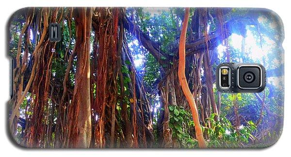 Banyan Tree Galaxy S5 Case