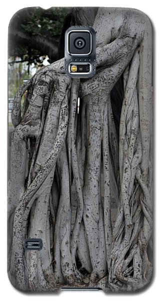 Banyan Tree, Maui Galaxy S5 Case