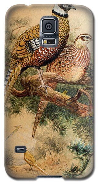 Bar-tailed Pheasant Galaxy S5 Case