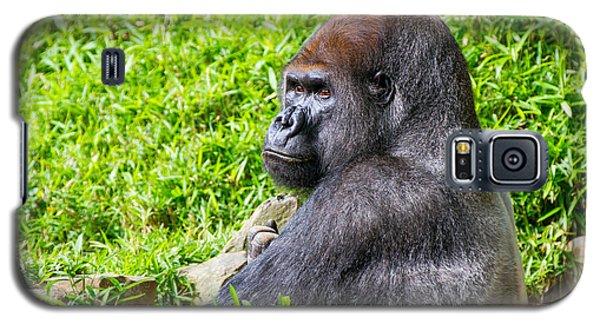 Baraka - Western Lowalnd Silverback Gorilla Galaxy S5 Case