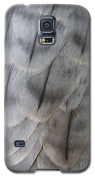 Barbary Falcon Feathers Galaxy S5 Case