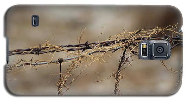 Barbed Wire Entwined With Dried Vine In Autumn Galaxy S5 Case