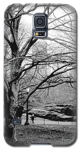 Galaxy S5 Case featuring the photograph Bare Tree On Walking Path Bw by Sandy Moulder