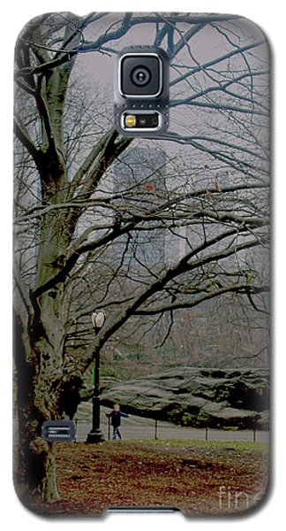 Galaxy S5 Case featuring the photograph Bare Tree On Walking Path by Sandy Moulder