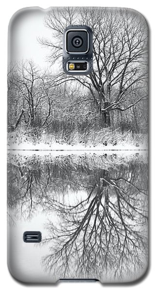 Galaxy S5 Case featuring the photograph Bare Trees by Darren White
