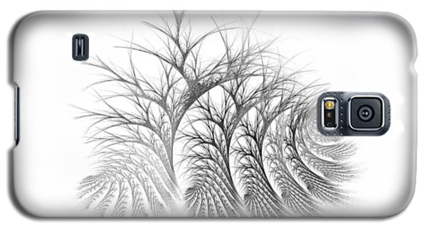 Bare Trees Daylight Galaxy S5 Case