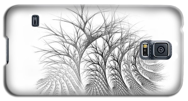 Bare Trees Daylight Galaxy S5 Case