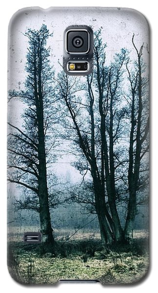 Bare Winter Trees Galaxy S5 Case by Karen Stahlros